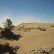 sand-dunes8
