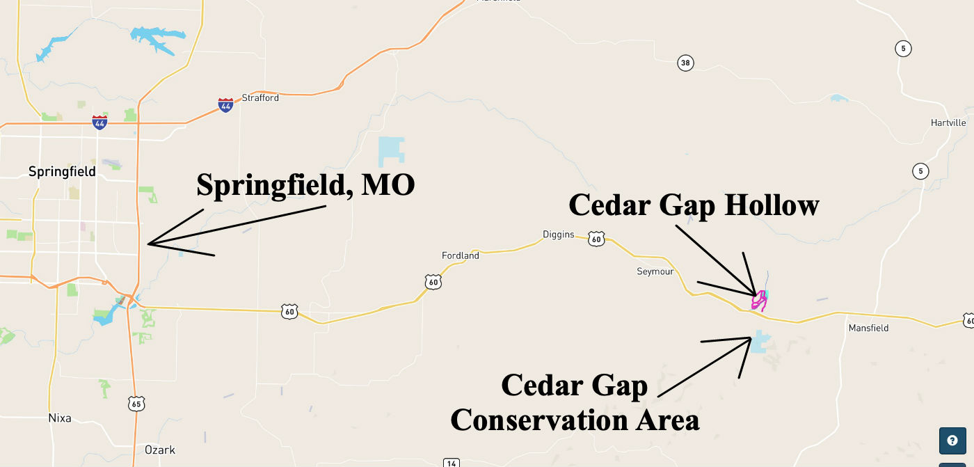 Cedar Gap Springfield Map